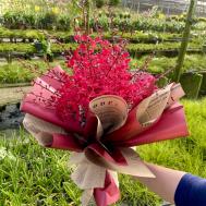 My Valentine Bouquet-