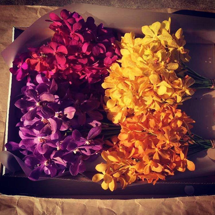 Mokara Orchid Giftbox (40 stalks)