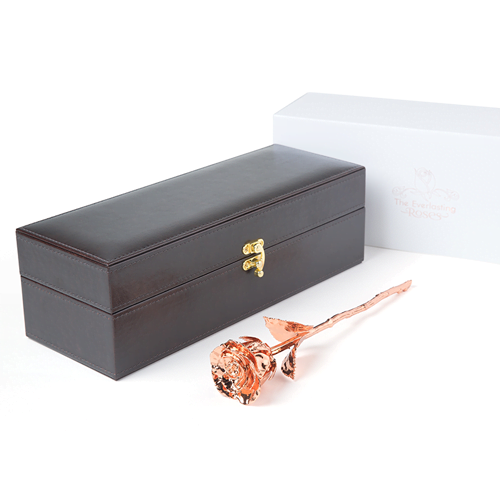 Everlasting Rose in Leather Box with Certificate of Authentication