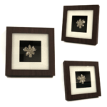 Platinum dipped Real Orchid in Classic Brown Frame