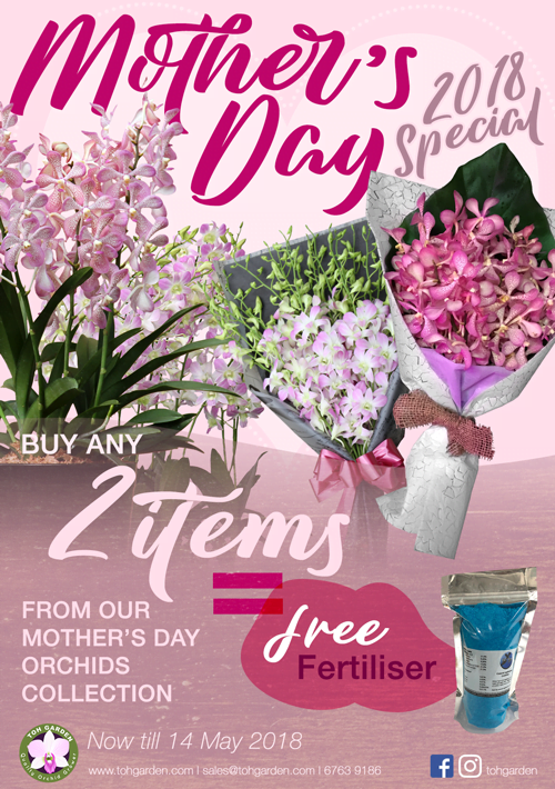 Toh Garden 2018 Mother's Day Orchid Collection. Buy 2 items get free fertiliser.