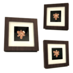 18k Rose Gold Dipped Real Orchid in Classic Brown Frame