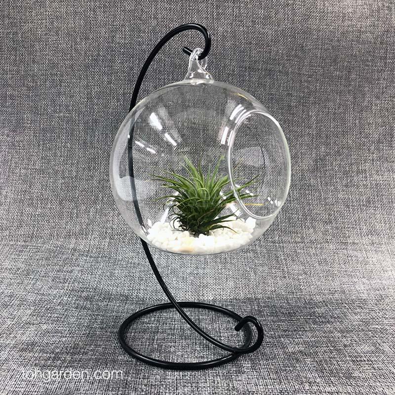 Glass Orb (12 /15cm)