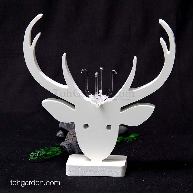 Design D: Reindeer Head Air Plant Holder