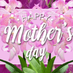 Gifting Orchids for Mother's Day 2019