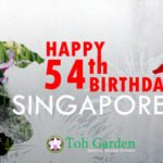 National Day 2019. Happy 54th Birthday Singapore!