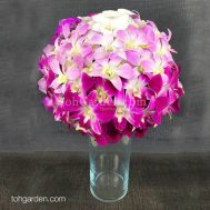 Ombre Dendrobium Table Arrangement