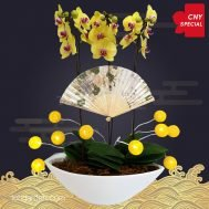 CNY Special Yellow Phalaenopsis Orchids