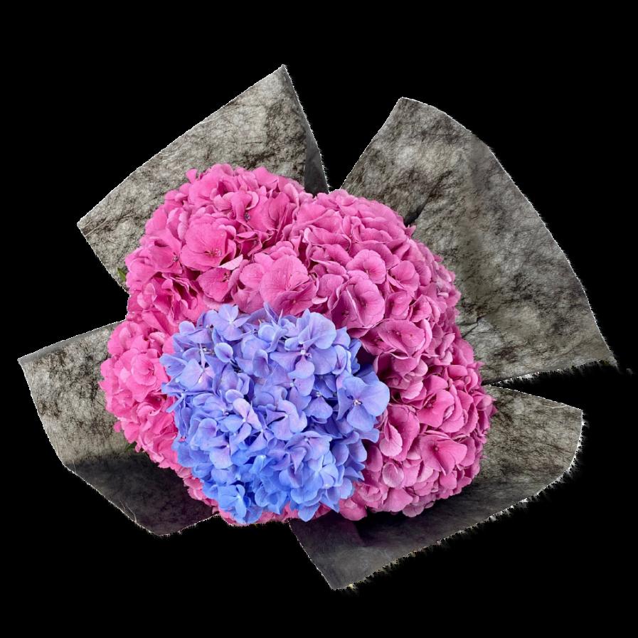 Sweet Hydrangea Bouquet