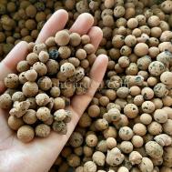 Leca Stone / Clay Balls For Hydroponics ( 8.16mm / 5L )