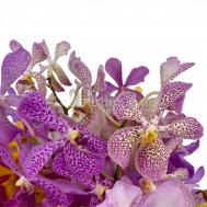 Ornate Orchids Flower Arrangement